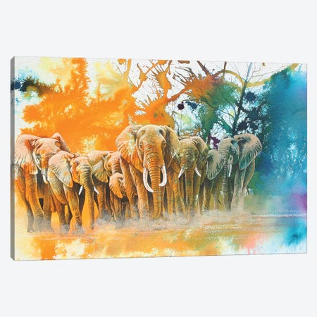 Elephant Tribe Canvas Print #GST170} by Graeme Stevenson Canvas Art Print