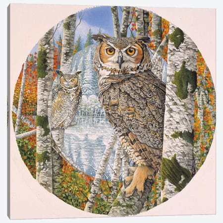 Great Horned Camoflage Canvas Print #GST181} by Graeme Stevenson Canvas Wall Art