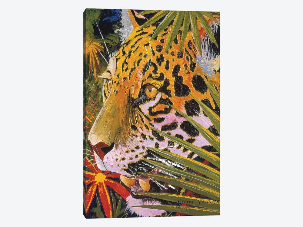 Jaguar Jungle by Graeme Stevenson 1-piece Canvas Art Print