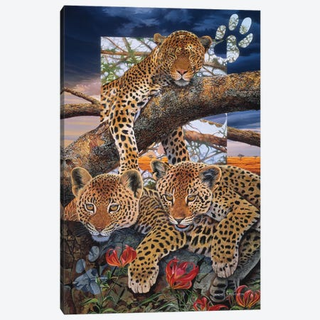 A Mother's Dream Canvas Print #GST1} by Graeme Stevenson Canvas Art