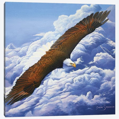 Lifted To The Sky Canvas Print #GST205} by Graeme Stevenson Canvas Art