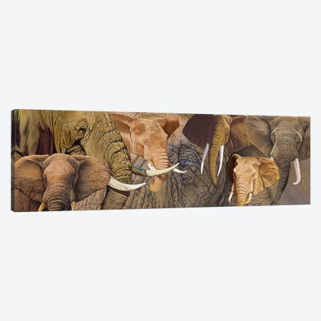 Long Ele Canvas Print #GST207} by Graeme Stevenson Canvas Artwork