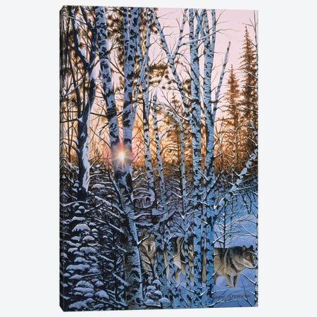 Lupus Dawn 3-Piece Canvas #GST208} by Graeme Stevenson Canvas Art Print