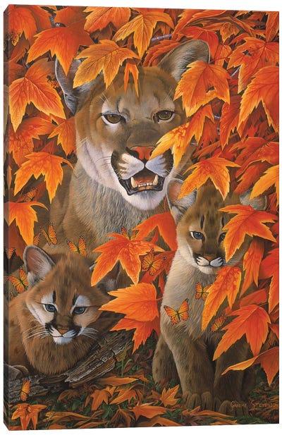 Mountain Colors Canvas Art Print