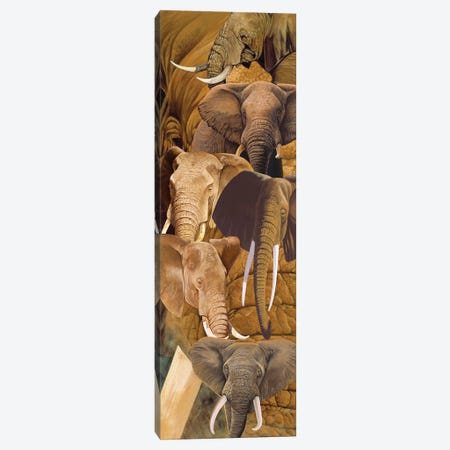 Elephant heads Canvas Print #GST21} by Graeme Stevenson Canvas Art