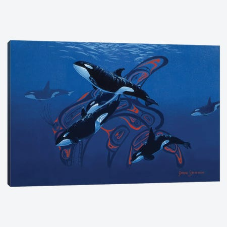 Orca Days Canvas Print #GST233} by Graeme Stevenson Canvas Artwork