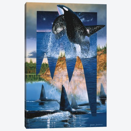 Orca Reflections Canvas Print #GST234} by Graeme Stevenson Art Print