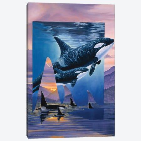 Orca Song Canvas Print #GST235} by Graeme Stevenson Canvas Art Print