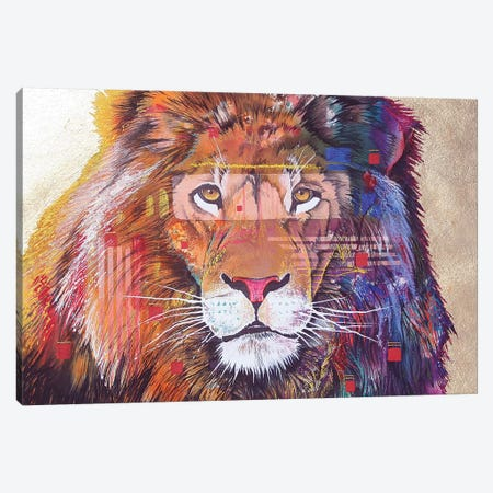 Rainbow Majesty Canvas Print #GST241} by Graeme Stevenson Canvas Print