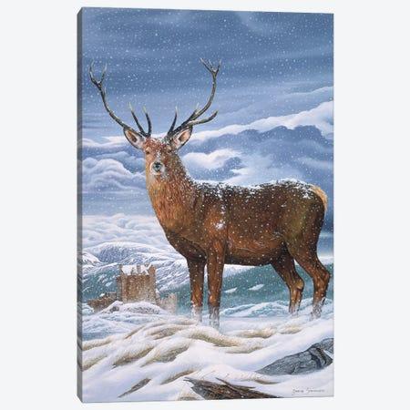 Royal Scot Canvas Print #GST245} by Graeme Stevenson Canvas Artwork