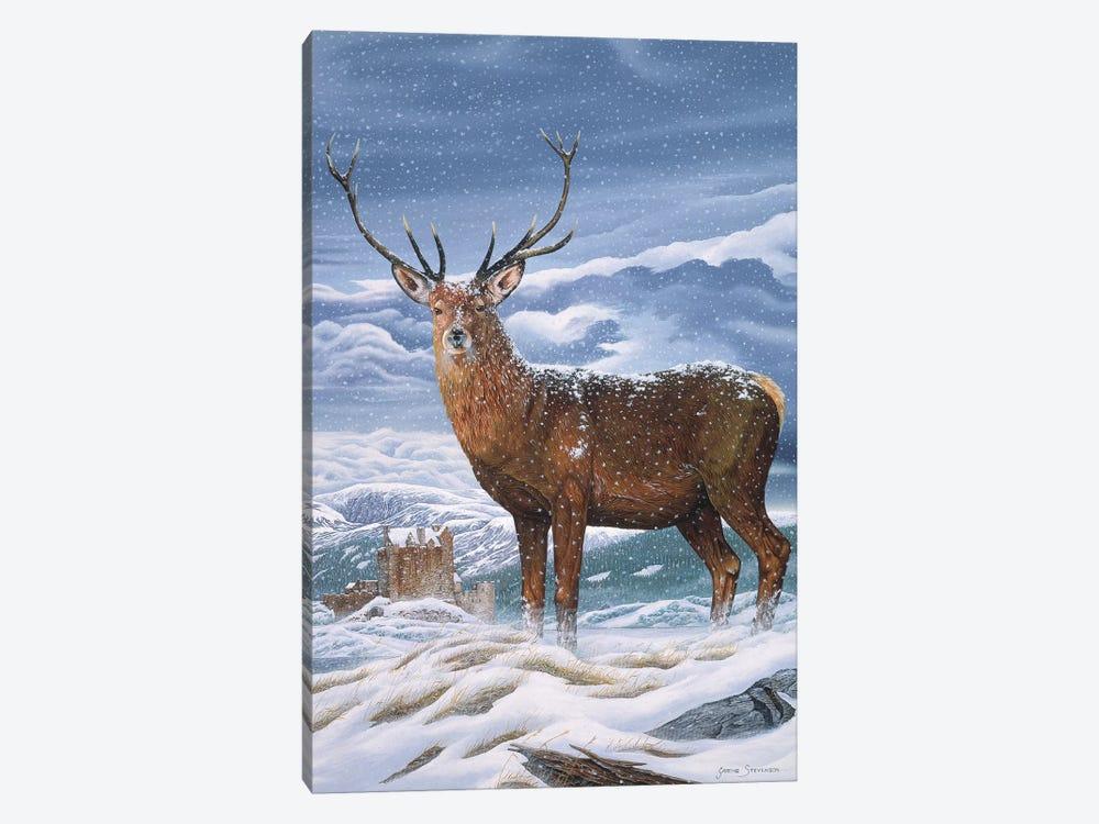 Royal Scot by Graeme Stevenson 1-piece Canvas Artwork