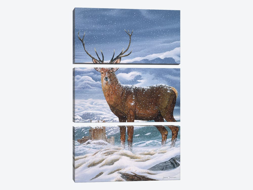 Royal Scot by Graeme Stevenson 3-piece Canvas Art