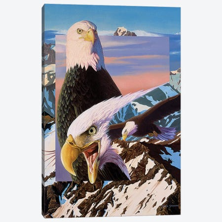 Screaming Eagles Canvas Print #GST246} by Graeme Stevenson Canvas Art