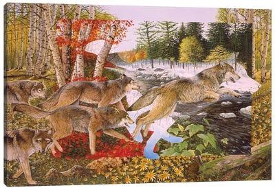 Seasons Of The Wolf Canvas Art Print