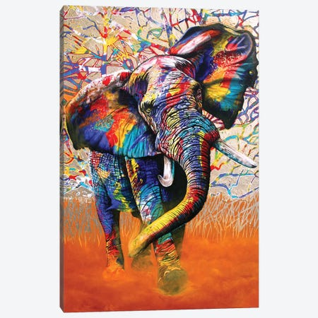 African Colours Canvas Print #GST2} by Graeme Stevenson Canvas Art