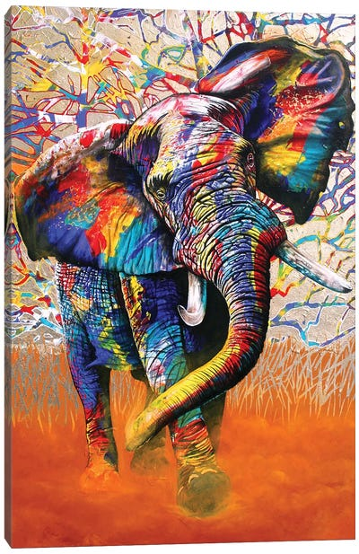 African Colours Canvas Art Print