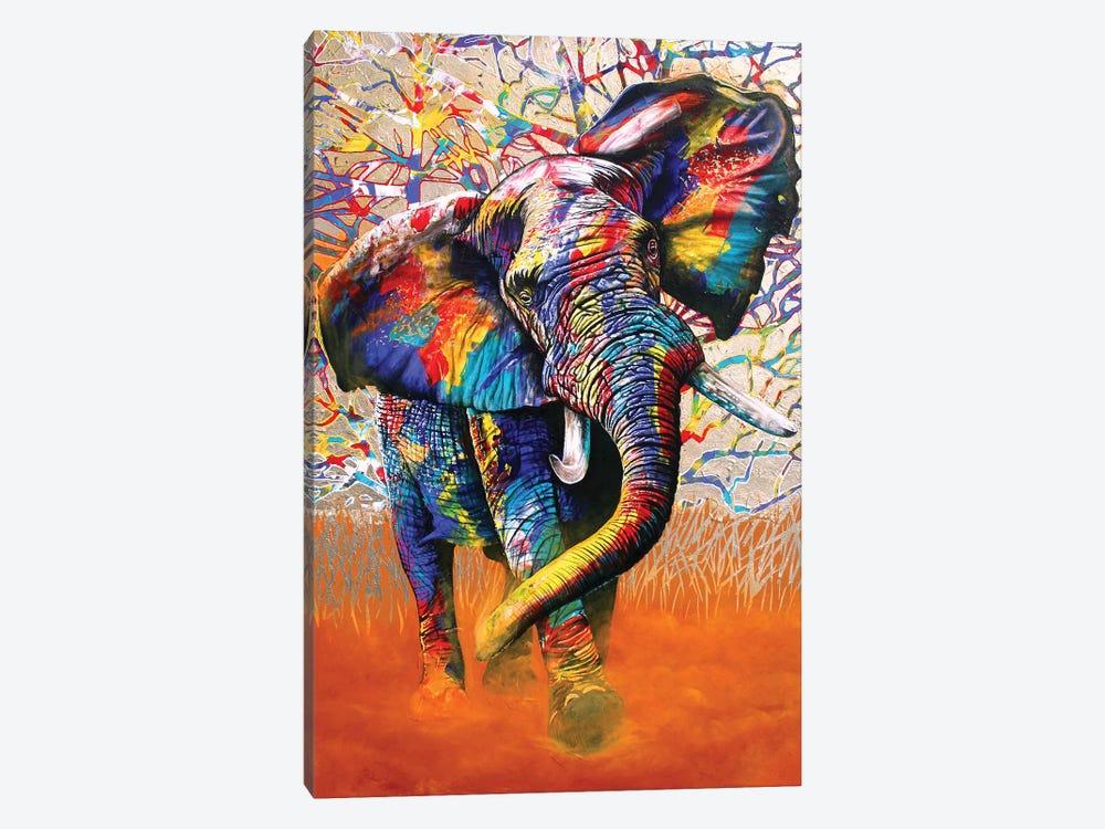 African Colours by Graeme Stevenson 1-piece Canvas Art