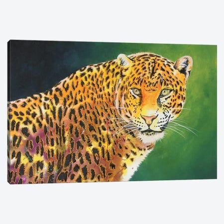 The Stare Canvas Print #GST308} by Graeme Stevenson Canvas Art