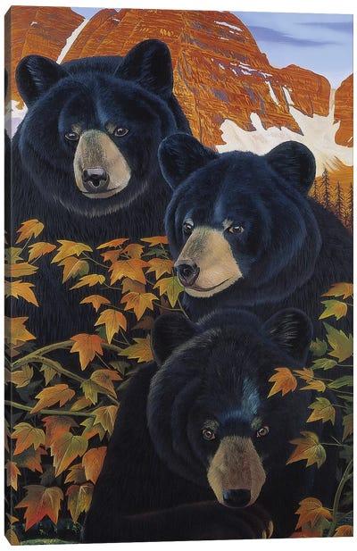 Threes Trouble Canvas Art Print