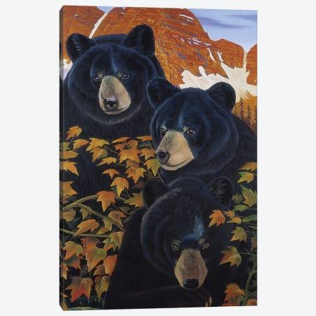 Threes Trouble Canvas Print #GST316} by Graeme Stevenson Canvas Wall Art