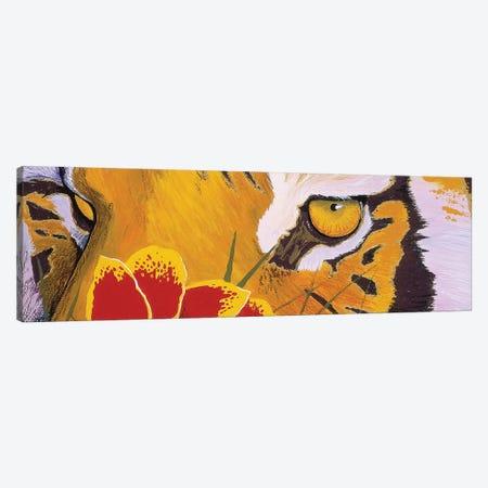 Tiger Eye Canvas Print #GST318} by Graeme Stevenson Canvas Art Print