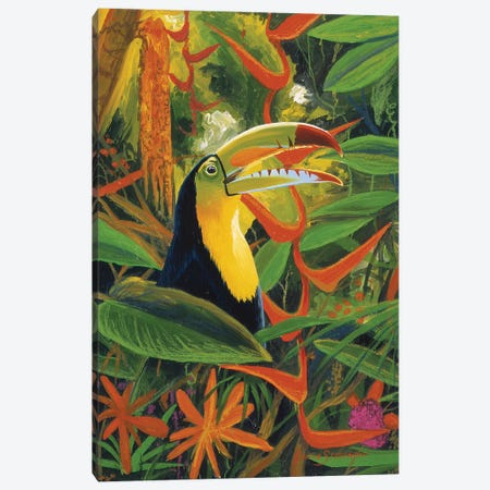 Toucan Colors Canvas Print #GST327} by Graeme Stevenson Art Print