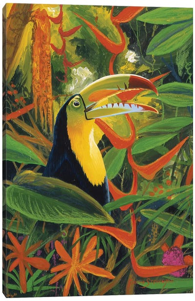 Toucan Colors Canvas Art Print