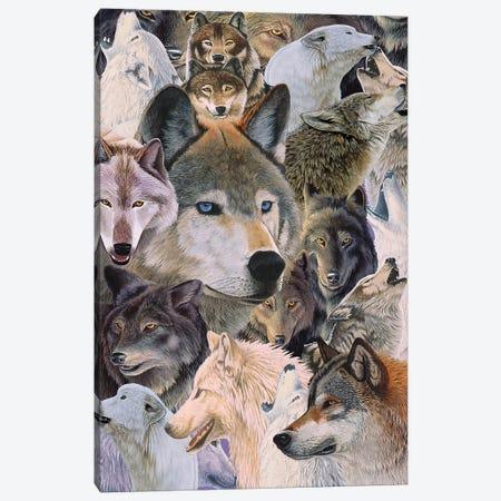 Wolves Alive Canvas Print #GST344} by Graeme Stevenson Canvas Print