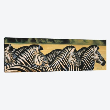Zebras Canvas Print #GST349} by Graeme Stevenson Canvas Wall Art