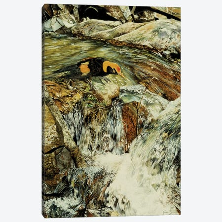 Majic Valley Canvas Print #GST41} by Graeme Stevenson Canvas Wall Art