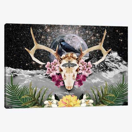 Raven Canvas Print #GSZ17} by Gloria Sánchez Canvas Artwork