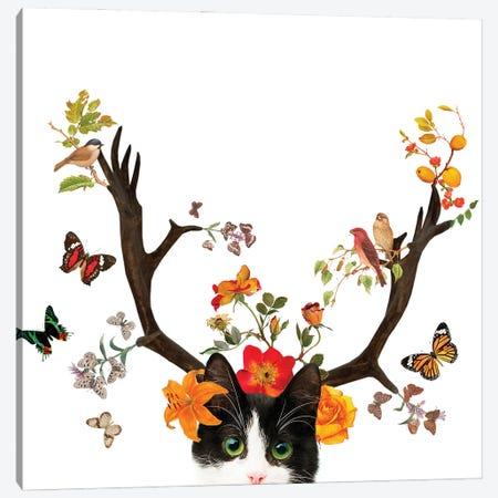 Cat Horns Canvas Print #GSZ4} by Gloria Sánchez Canvas Print