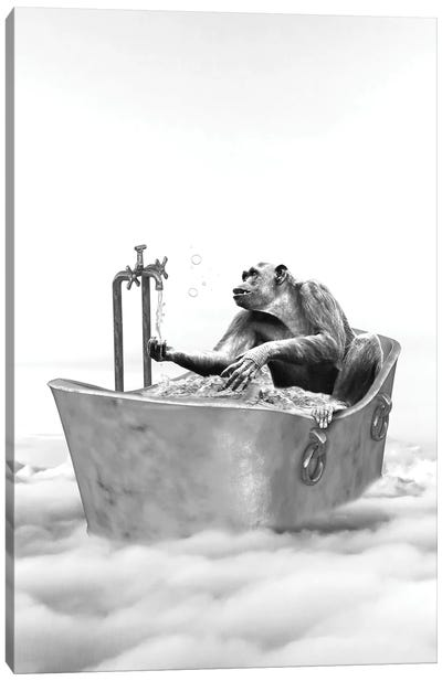 Chimpanzee Bath Canvas Art Print