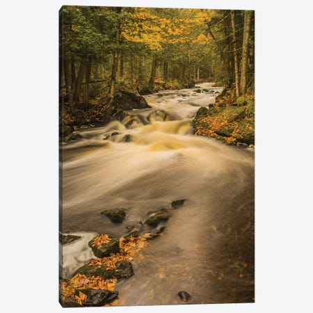 USA, Michigan, Fall Colors, Stream Canvas Print #GTH21} by George Theodore Canvas Art Print