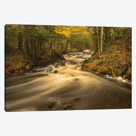 USA, Michigan. Fall Colors, Stream Canvas Print #GTH23} by George Theodore Art Print