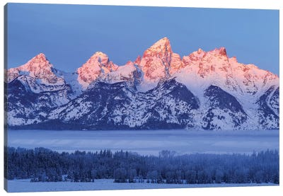 USA, Wyoming. Grand Teton National Park, winter landscape I Canvas Art Print