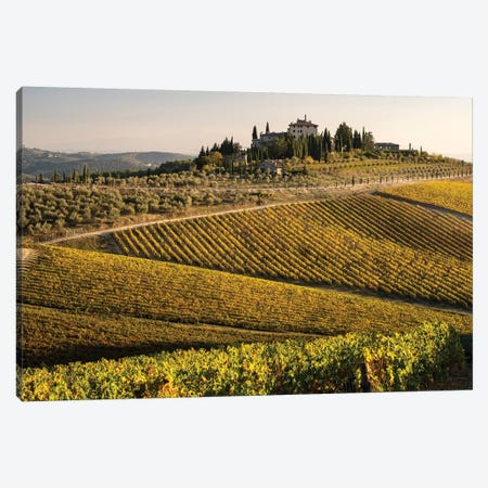 Italy, Tuscany. Vineyard In Autumn. 3-Piece Canvas #GTH48} by George Theodore Canvas Print