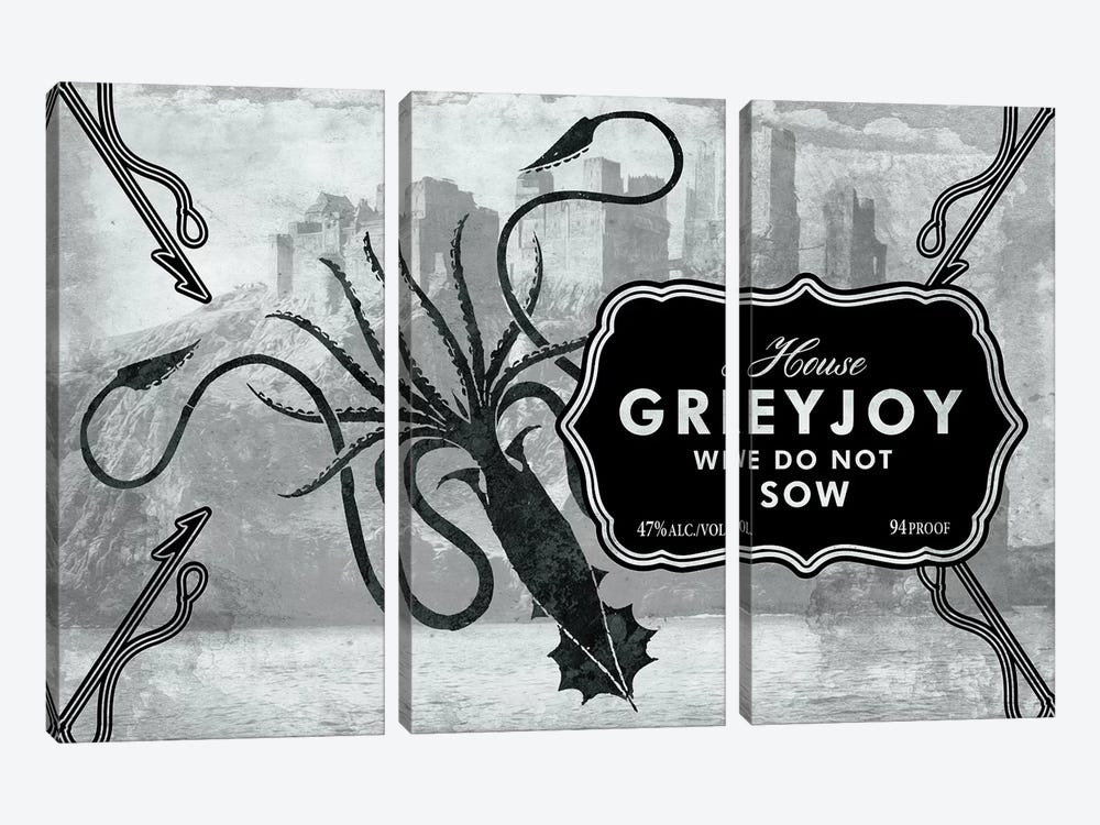 Greyjoy Rum by 5by5collective 3-piece Canvas Art Print