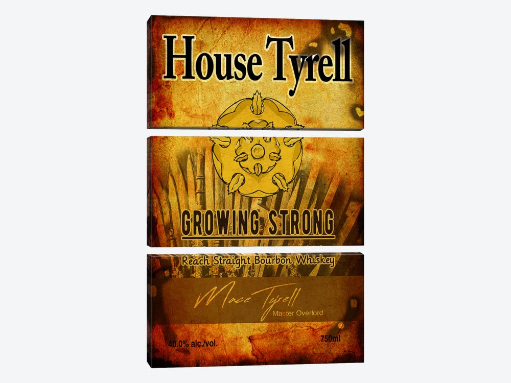 House Tyrell Bourbon by 5by5collective 3-piece Canvas Artwork
