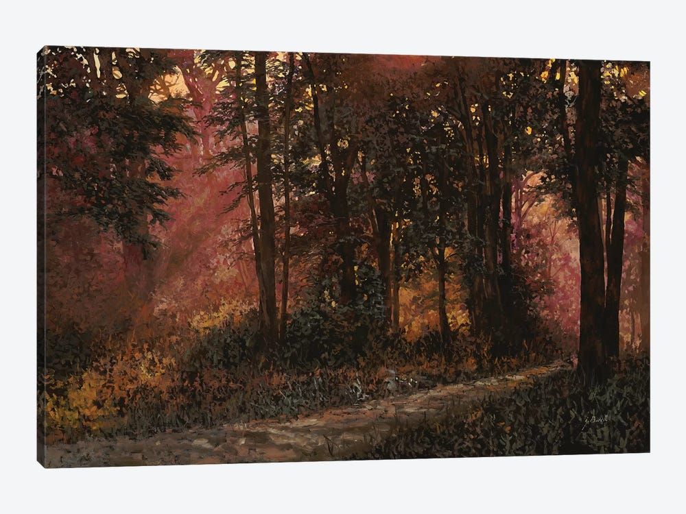 Luci Nel Bosco by Guido Borelli 1-piece Canvas Print