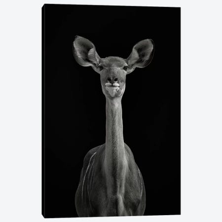 To Be Standing To Attention Canvas Print #GUL1} by Mathilde Guillemot Art Print