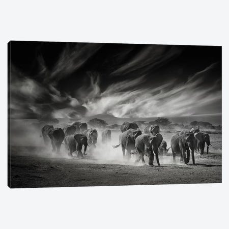 The Sky, The Dust And The Elephants Canvas Print #GUL9} by Mathilde Guillemot Canvas Art Print