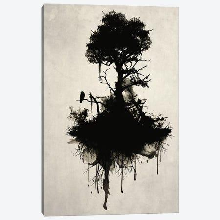 Last Tree Standing Canvas Print #GUS16} by Nicklas Gustafsson Canvas Art Print