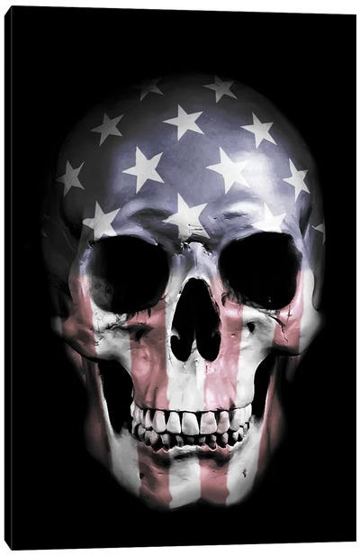 American Skull Canvas Art Print
