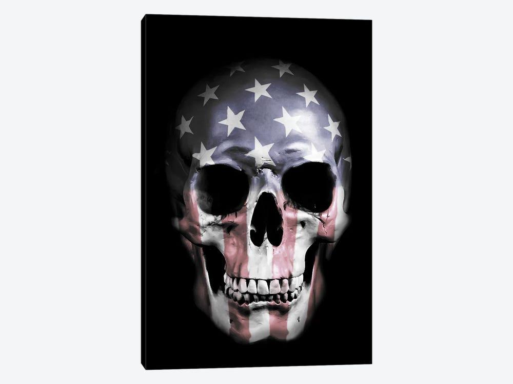 American Skull by Nicklas Gustafsson 1-piece Canvas Artwork