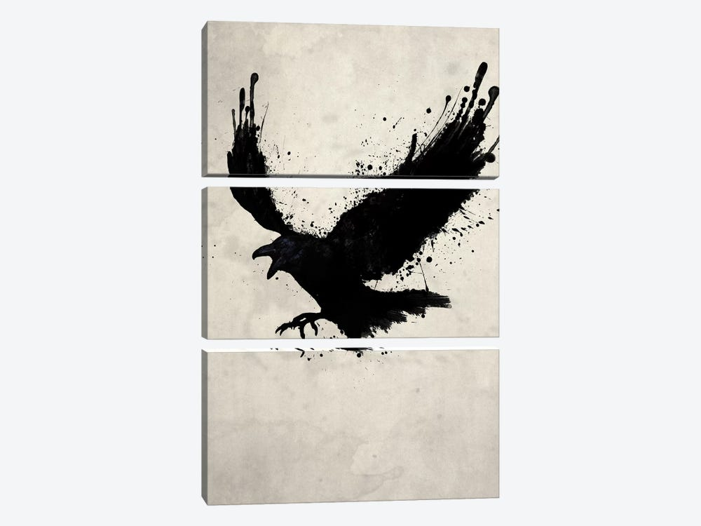 Raven by Nicklas Gustafsson 3-piece Canvas Art