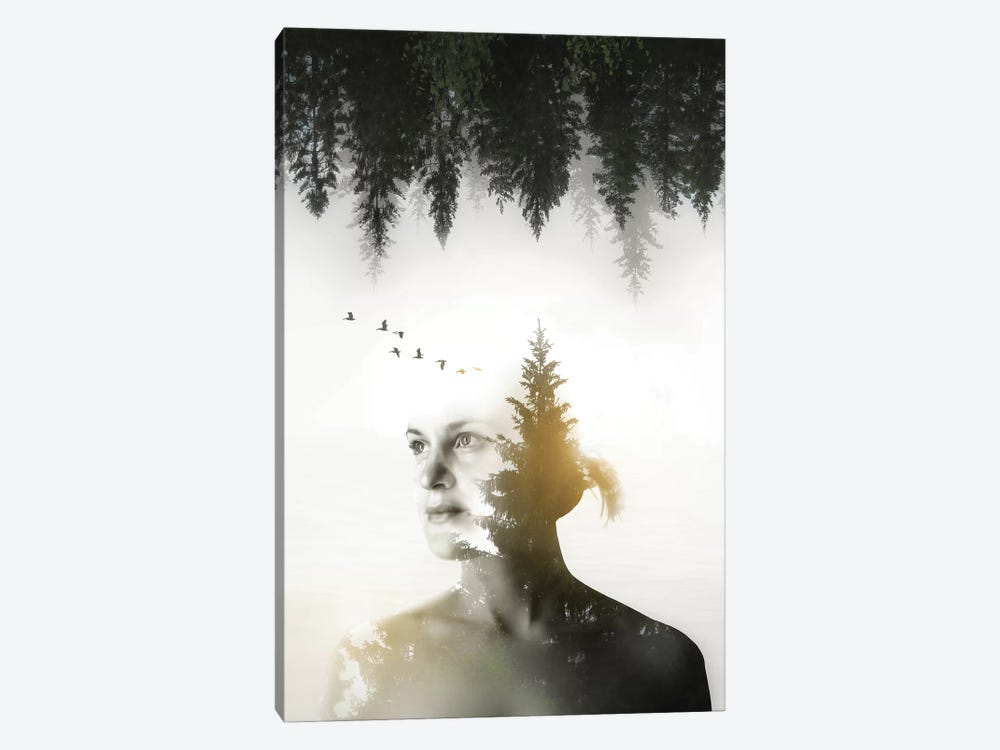 Soul of Nature by Nicklas Gustafsson 1-piece Canvas Art Print