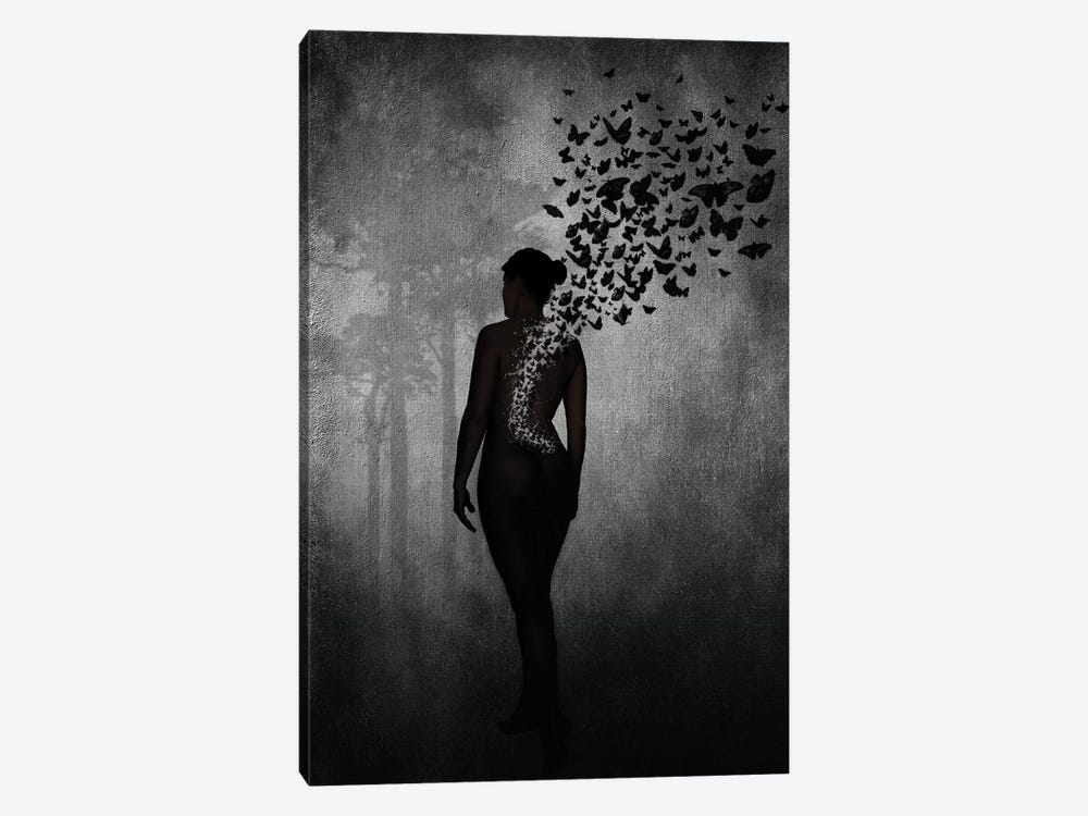 The Butterfly Transformation by Nicklas Gustafsson 1-piece Canvas Art