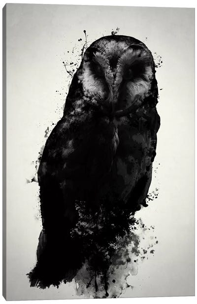 The Owl Canvas Art Print