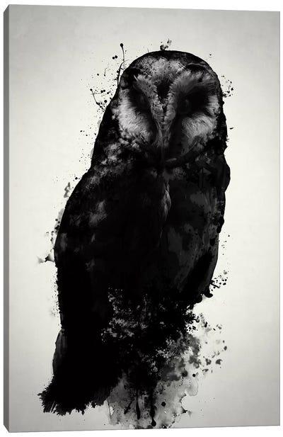 The Owl Canvas Art Print